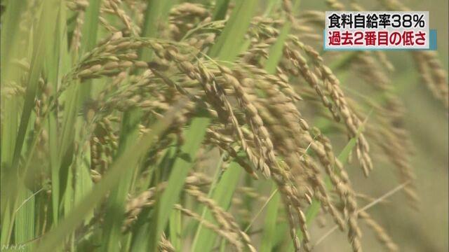 日本の食料自給率が下がる 2016年度は38%