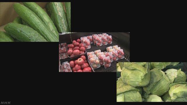 天気が悪い日が続いて野菜の値段が上がる