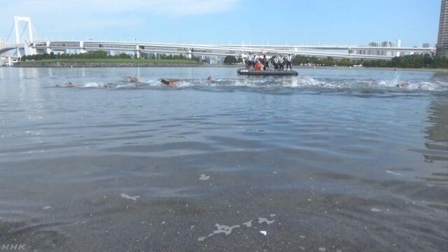 東京オリンピックで水泳を行う海 大腸菌などが多い