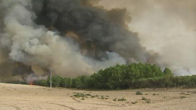 ポルトガルで山の火事 隣のスペインにも広がる