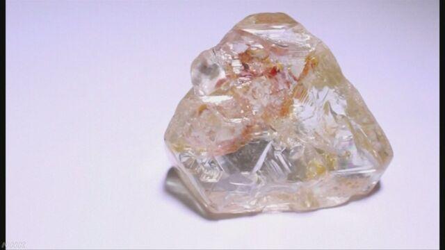 大きなダイヤモンドを貧しい人のためにオークションに出す