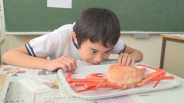 富山県 小学校の給食で1人1匹のベニズワイガニ