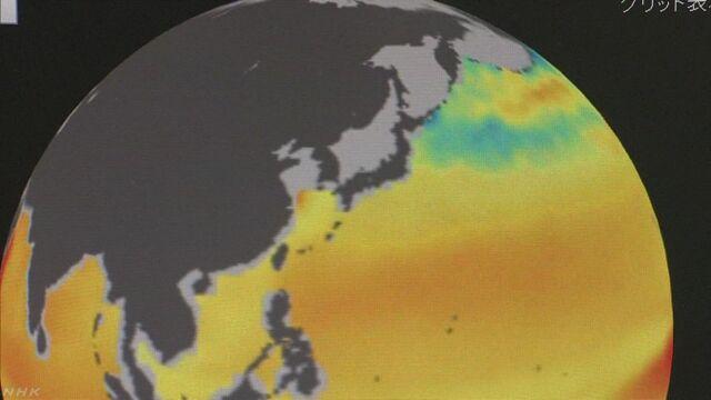 世界の海の水が二酸化炭素で酸性になっている
