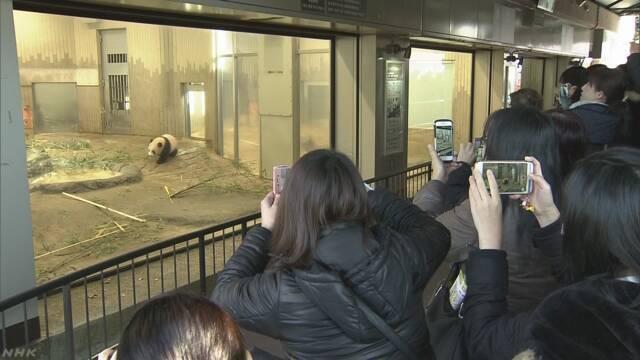 シャンシャン 一般公開始まる 上野動物園