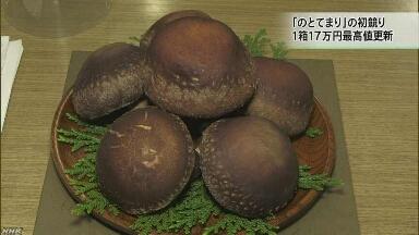 石川県 しいたけが6個で17万円になる