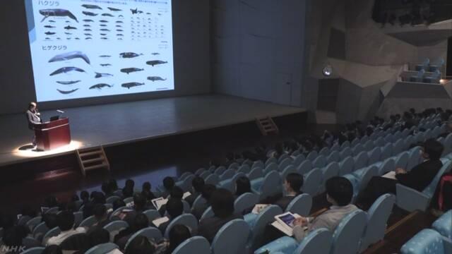 八丈島でザトウクジラの調査報告会