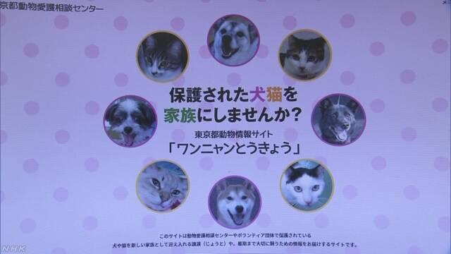 動物殺処分ゼロへ 東京都が犬や猫の譲渡サイト開設