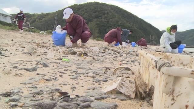 奄美大島で海岸に流れてきた油の掃除が始まる