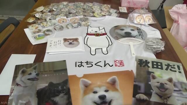 ザギトワに秋田犬のぬいぐるみ贈る 秋田県と大館市
