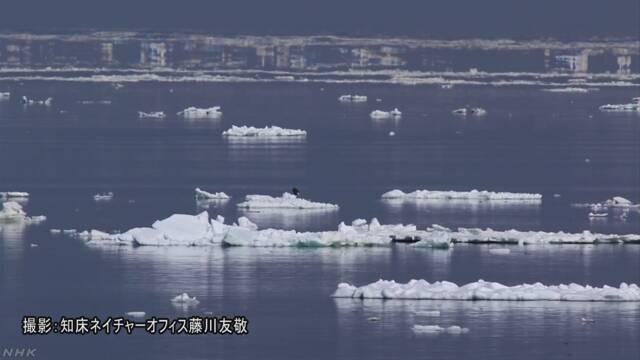 北海道 氷が水平線に浮いているように見える