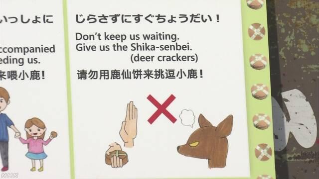 「鹿を怒らせないで」英語と中国語で看板 外国人けが急増 奈良