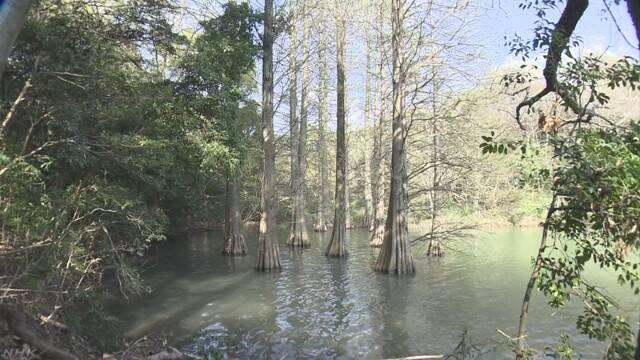 インスタグラムで人気の九州大学の森 「ルールを守って」