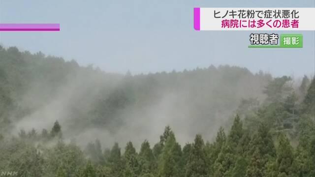 ヒノキ花粉が急増 都内で記録的飛散量(動画)