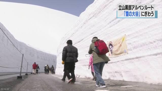 立山黒部アルペンルート「雪の大谷」観光客でにぎわう