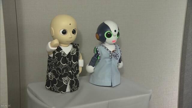 おもてなしロボット登場 ホテルの接客に特化