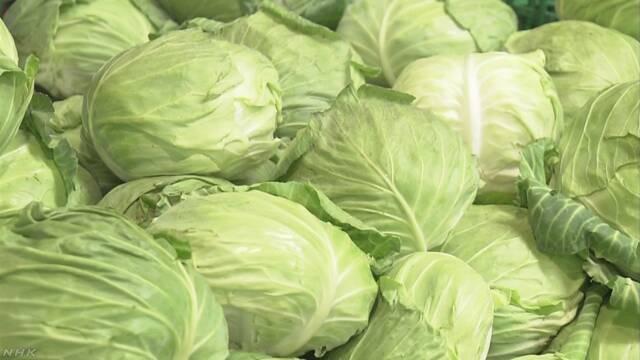 暑さで野菜の値段が高くなる