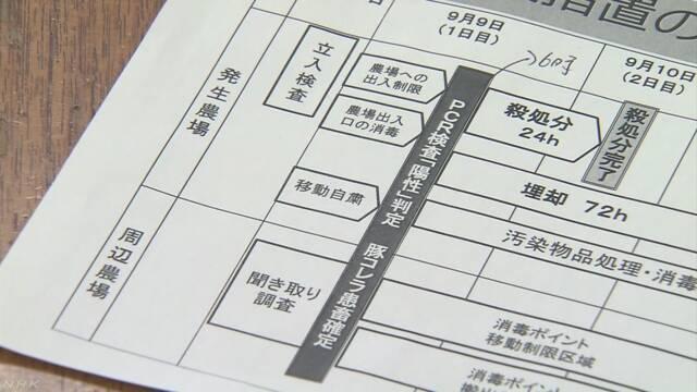 岐阜市で豚の病気「豚コレラ」が見つかる