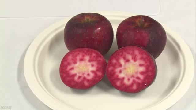 信州大学が「世界で最も赤いりんご」を作る