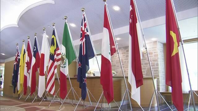 TPPが今年12月30日にスタートする