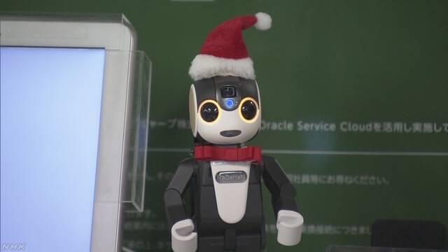 いろいろな国の言葉で話すAIのロボットが駅で案内をする