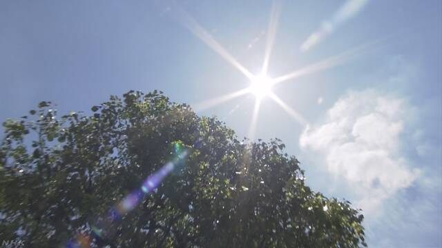 今年の世界の平均の気温は今までで4番目に高い
