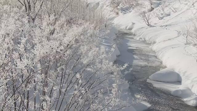 北海道 空気の中の氷が光る「ダイヤモンドダスト」